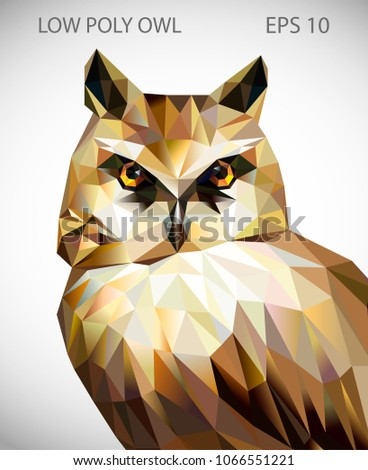 Vector design of owl in low poly style. Polygonal animal illustration.