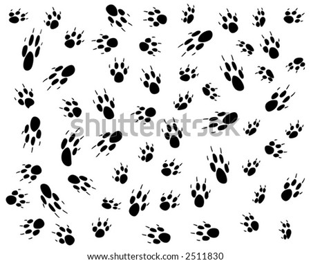 Vector design of random dog pawprints - stock vector