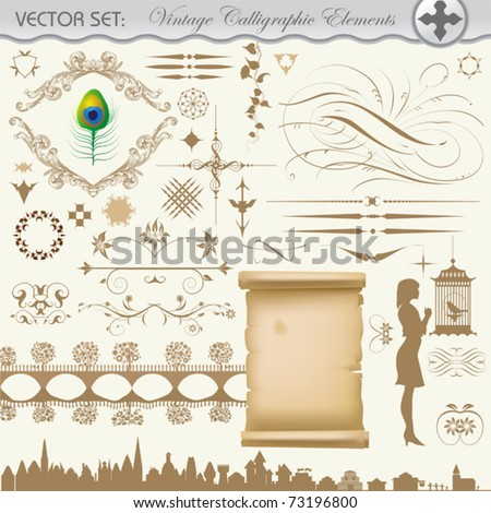 Vector design set. Decoration and vintage calligraphic elements.