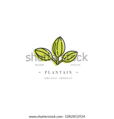 vector design template logo and