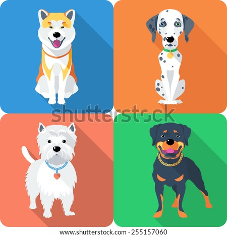 vector dog akita inu
