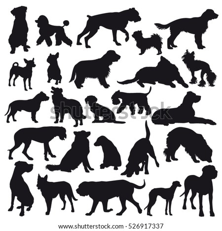 Vector dog breed silhouettes collection. Black dog icons collection isolated.