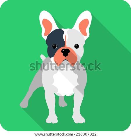vector dog french bulldog icon