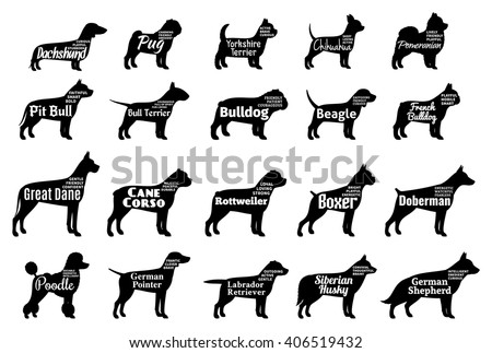 Vector dog silhouettes collection for dog club, pet clinic and pet shop.