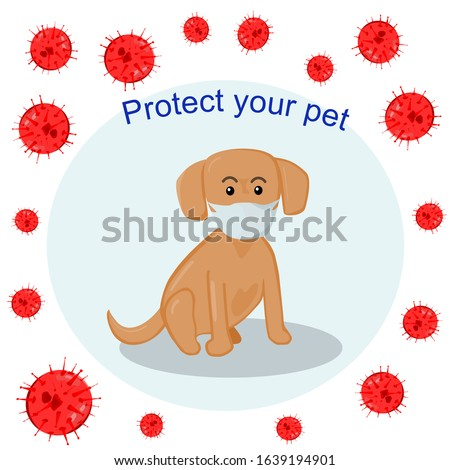 Vector dog wear mask for protect itself .picture tell about don't forget to protect your pets from virus ,coronavirus too.