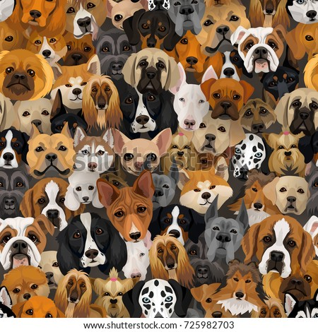 Stock Photo Vector dogs different breeds seamless pattern or wrapping paper 2018 year of dog background with husky, dalmatian, bulldog, schnuzer, spaniel and other breeds