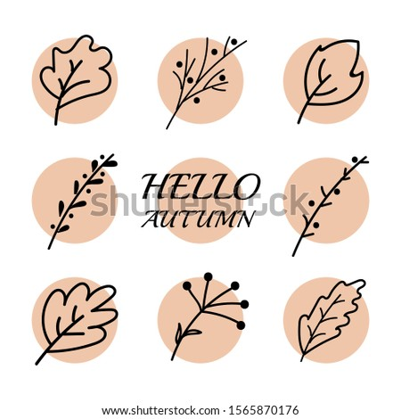 Vector doodle. Hello autumn. leaves set. Set of icons.