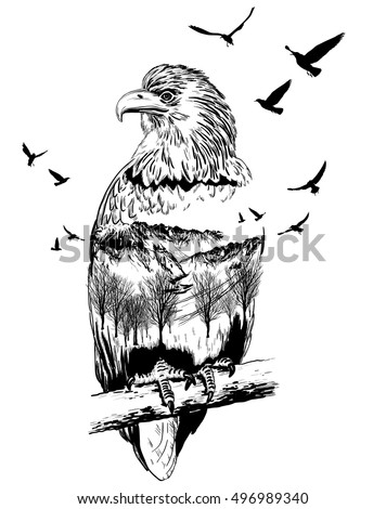 Vector Double exposure, eagle for your design, wildlife concept