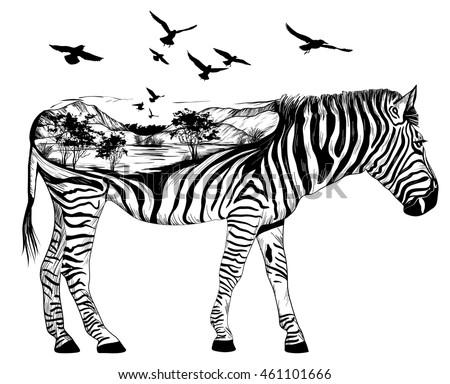 vector double exposure.  zebra...