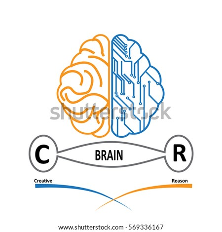 vector double side of brain for
