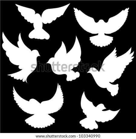 Vector dove symbol