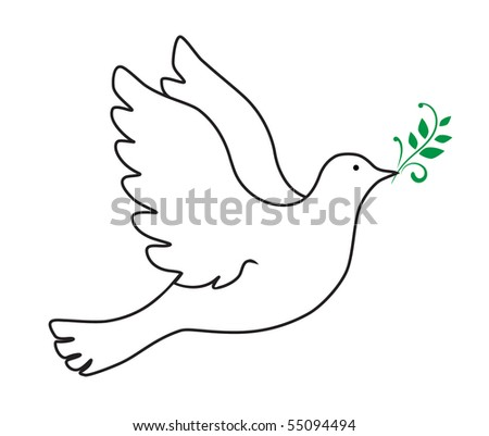 vector dove symbol  on white