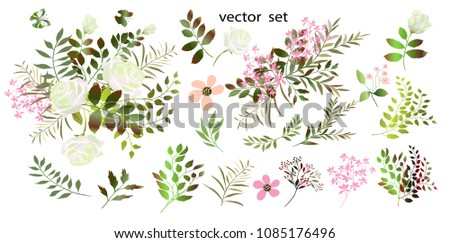 Vector drawing  Botanical illustration. The composition of white roses, pink flowers, colorful leaves, wild herbs. A set of bouquets, flower arrangements .