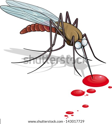 vector drawing of a mosquito