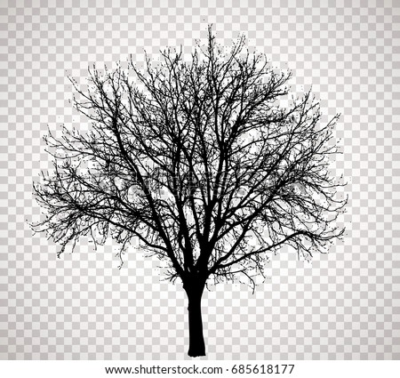 Winter Tree | Winter Tree Silhouettes Download Free Vector Art Stock Graphics
