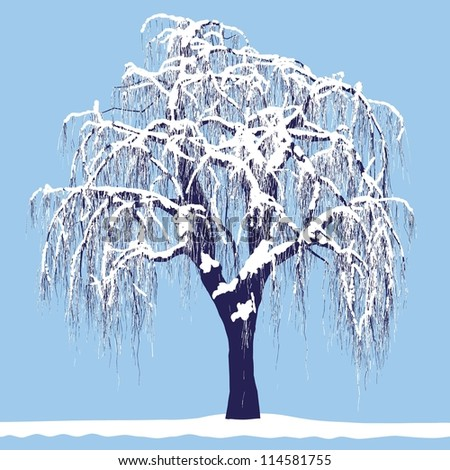 vector drawing of the tree in winter - detailed vector #114581755