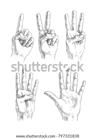 Vector drawing set of gestures fingers counting from one to five. Vintage engraved illustration with hands showing different numbers isolated on white background