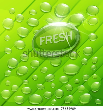 Vector drops of dew on a green background