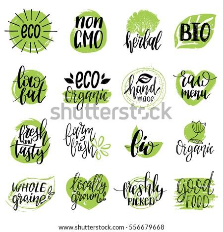 vector eco  organic  bio logos