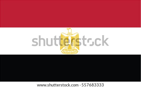 Vector Egypt flag, Egypt flag illustration, Egypt flag picture, Egypt flag image,