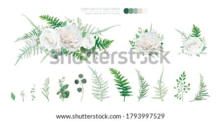 Vector elegant floral bouquet: Ivory white, creamy peony Rose flowers, silver sage Eucalyptus branches, greenery leaves, ferns, green asparagus. Wedding editable watercolor style designer elements set