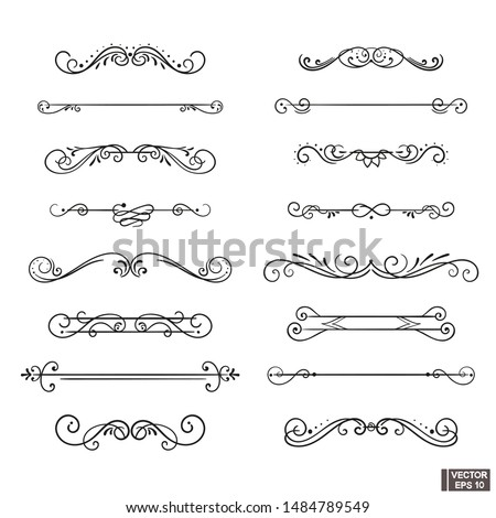 Vector elements. A set of curls and scrolls for design and decoration.