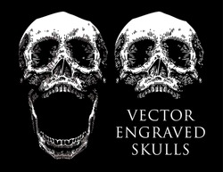 vector engraved skull set