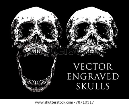 vector engraved skull set