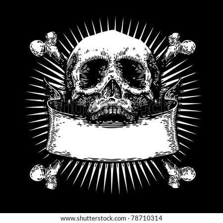 vector engraved skull with