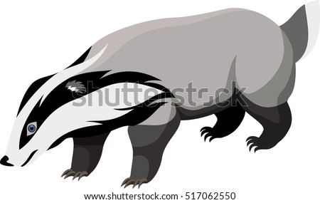 vector european badger