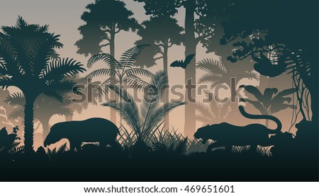 vector evening in jungle with