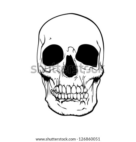 vector evil human skull for halloween.eps10