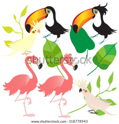 vector exotic birds and leaf icons set. cockatoo, toucan, corella, flamingo.
