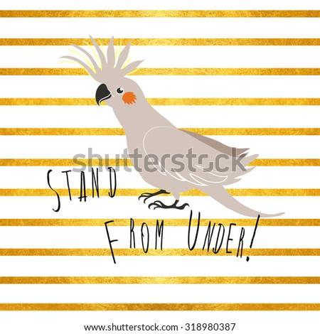 vector exotic birds corella on gold stripes background