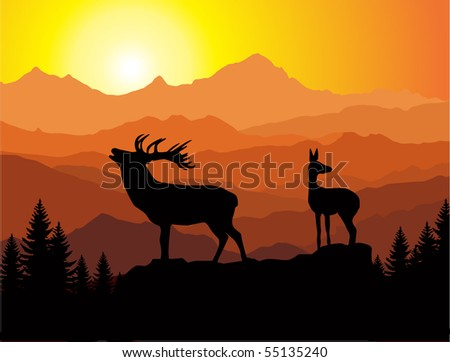 vector family of deer in mountains