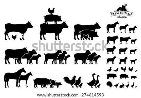 vector farm animals collection