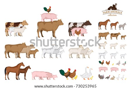 Vector farm animals isolated on white. Livestock and poultry icons