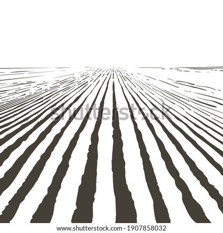 Vector farm field landscape. Pattern of plowed furrows in preparation for crops planting. Rows of soil, rural countryside perspective horizon view. Vintage realistic engraving sketch illustration. Foto stock ©