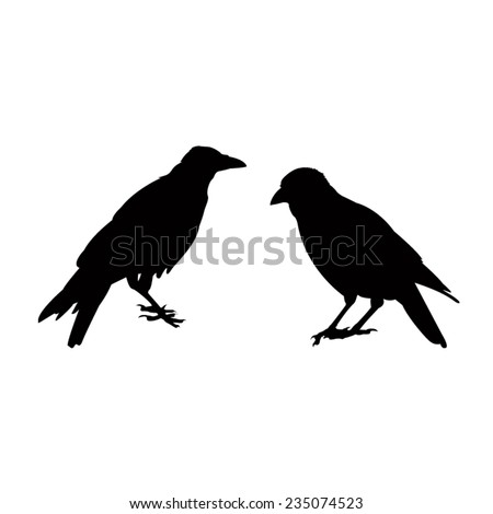 vector file of crow silhouette