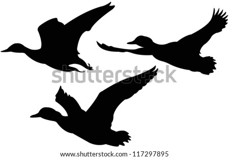 stock-vector-vector-file-of-flying-ducks