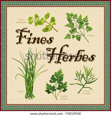 vector - Fines Herbes. Classic French herb blend for cooking: Sweet Marjoram, Chervil, Chives, Italian Parsley, Tarragon. Textured background, antique mosaic frame. EPS8 in groups for easy editing.