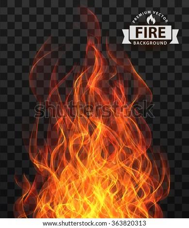 Vector fire flame frame border