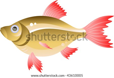 Vector fish. Isolated on white.