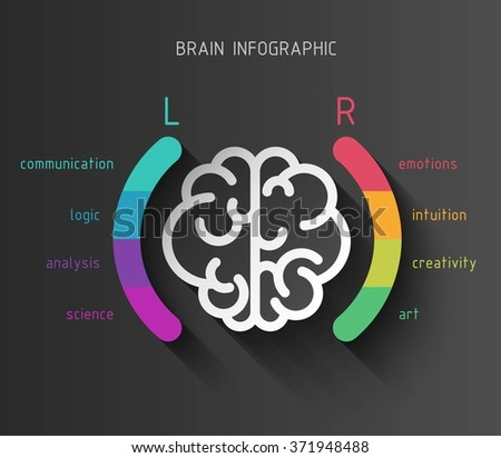Vector flat brain infographic paper sign with left and right hemisphere in colorful parentheses and different brain functions