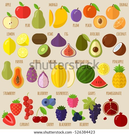 vector flat design fruits and
