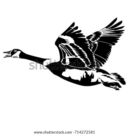 Vector flat illustration of black silhouette flying goose. Element for design.