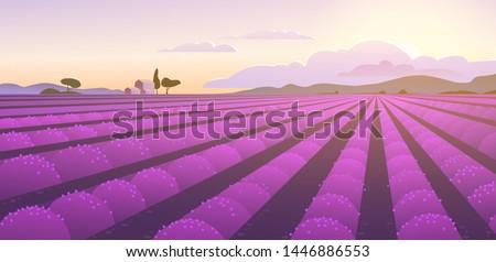 vector flat landscape