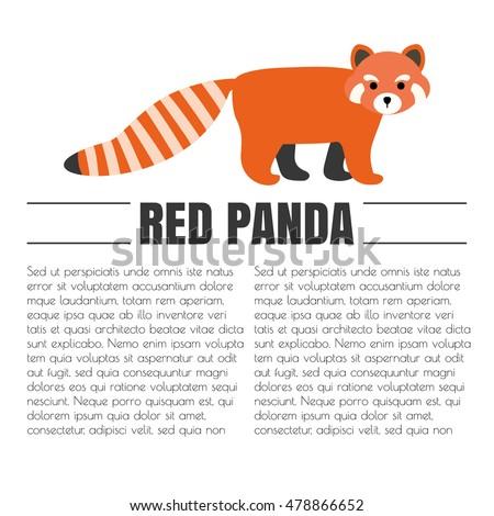 vector flat red panda animal