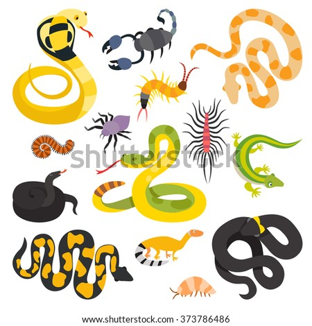 vector flat snakes and other
