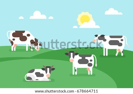 Vector flat style illustration of cows graze in a field. Good sunny day. Nature background.